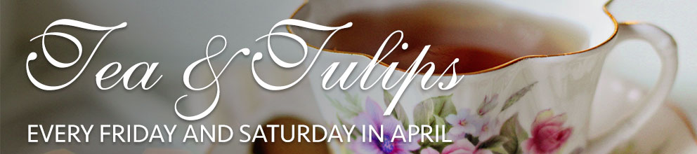 Tea & Tulips: Every Friday and Saturday in April