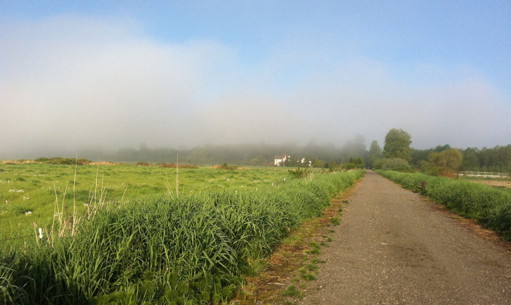 Farm to Forest History Bike Tour